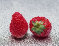 Strawberry picture PH8278736