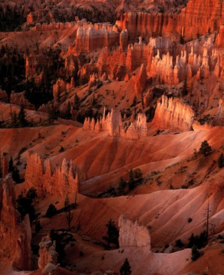 Bryce Canyon National Park poster PH9793012