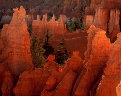 Bryce Canyon National Park poster PH9793075