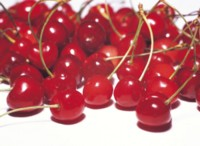 Cherry picture PH9803512