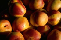 Peach picture PH9826443