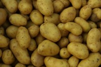 Potatoes picture PH8028865