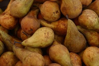 Pear poster PH9935474