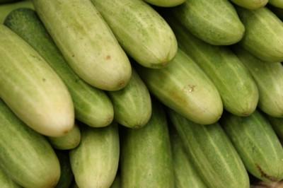 Cucumber poster PH9961072