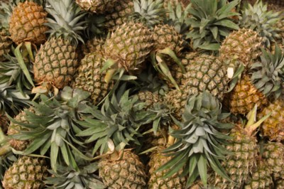Pineapple poster PH9976228