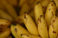Banana picture PH9979155